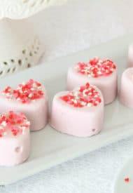 Pomegranate Frozen Yogurt