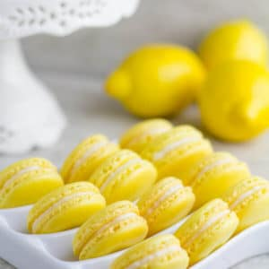 Lemon French Macarons-1
