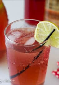 Cranberry Ginger Ale Punch-4