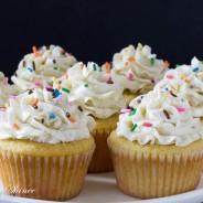 1 Vanilla Bean Cupcake-2