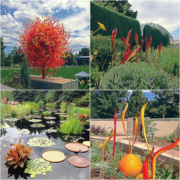 Denver Botanical Garden ~Sweet and Savory by Shinee