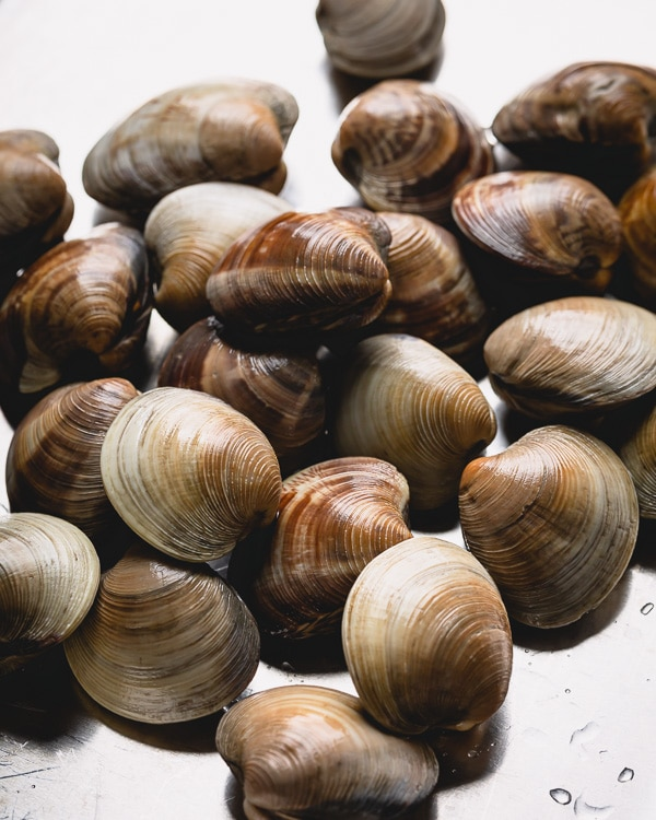 Learn how to clean little neck clams and degrit clams for your next soup, salad, or pasta dish. #littleneckclams #shortneckclams #tutorial #clams #seafood