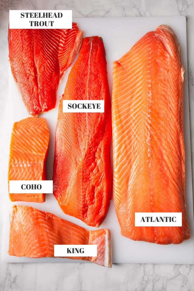 5 varieties of salmon filet: Atlantic, Coho, Sockeye, King and Steelhead Trout